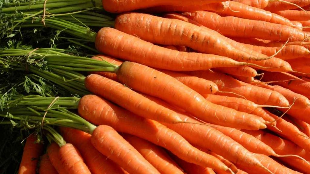 Carrots As A Substitute for Parsnips