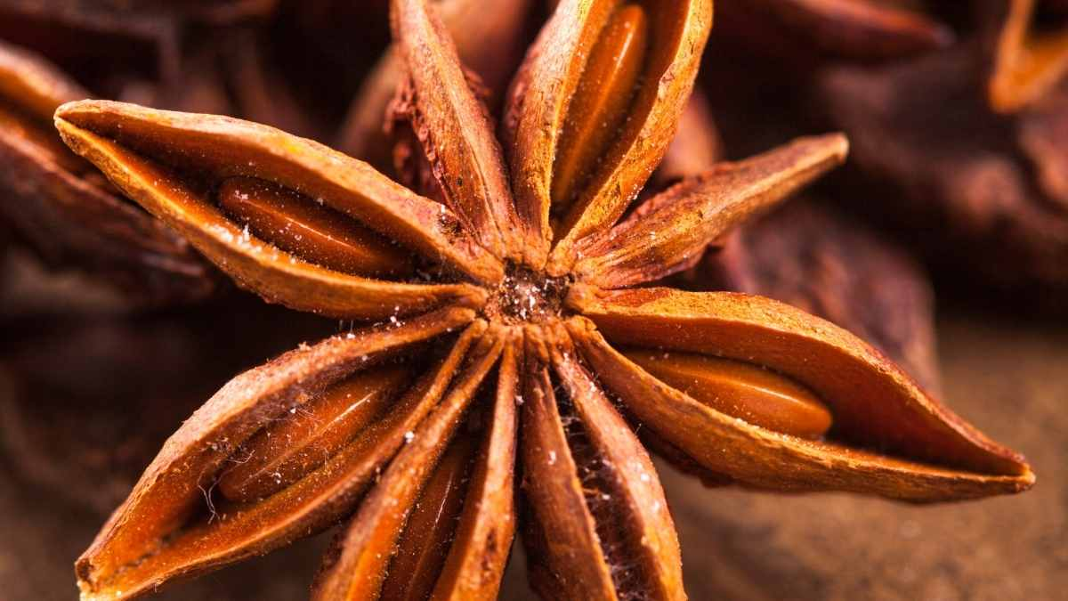 Star of Anise Substitute